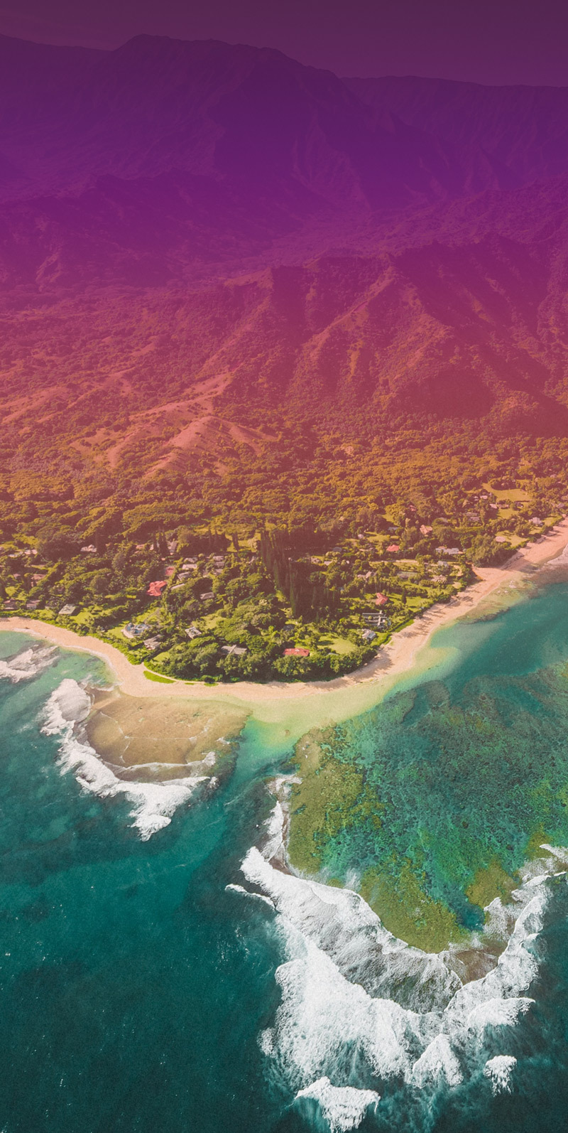 Image of 0221 Lumedic Hawaii with Overlay Vertical